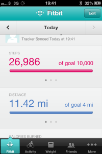 Fitbit record day