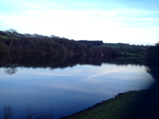Knypersley Pool from the dam