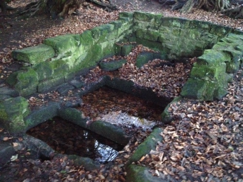 Gawton's Well basins